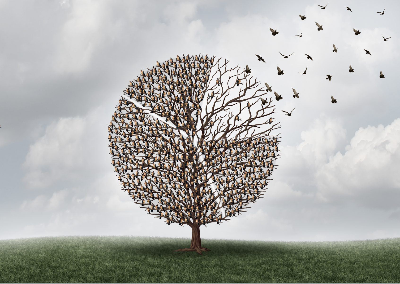 Wat betekent 'De Cloud' voor de datalogistiek in mijn organisatie?